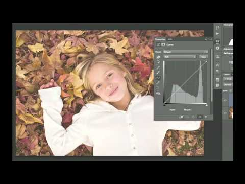 Photoshop CS6: Working with Curves