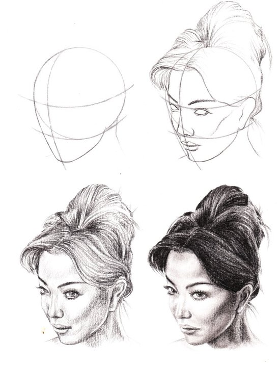 Study Of Anatomical Structure Drawings Best Tutuorial By Veri