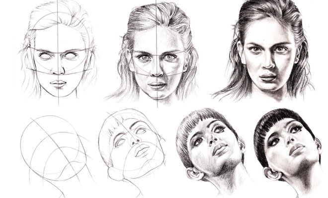 Study of Anatomical Structure Drawings -Best Tutuorial – by Veri Apriyatno