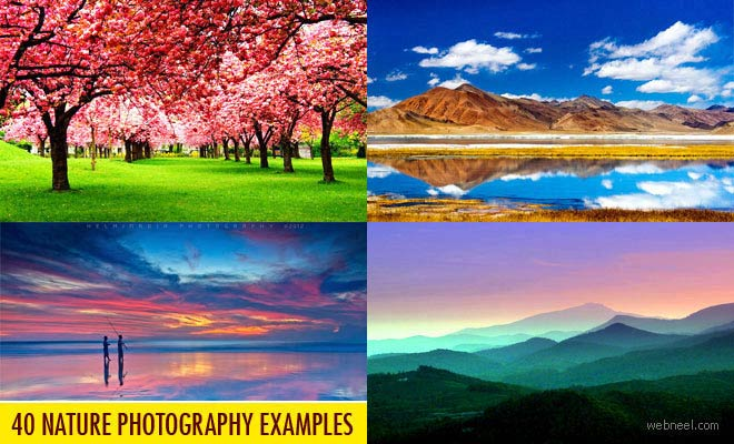 50 Beautiful Nature Photography examples from famous photographers