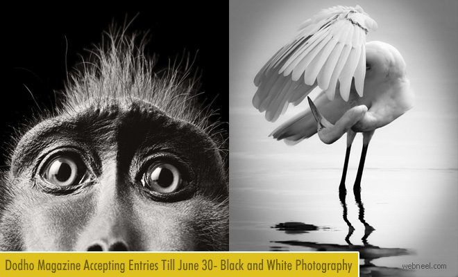 International Black and White Photography 2018 for Dodho Magazine – 30 June