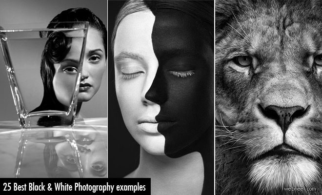 30 Mind-Blowing Black and White Photography examples – part 2